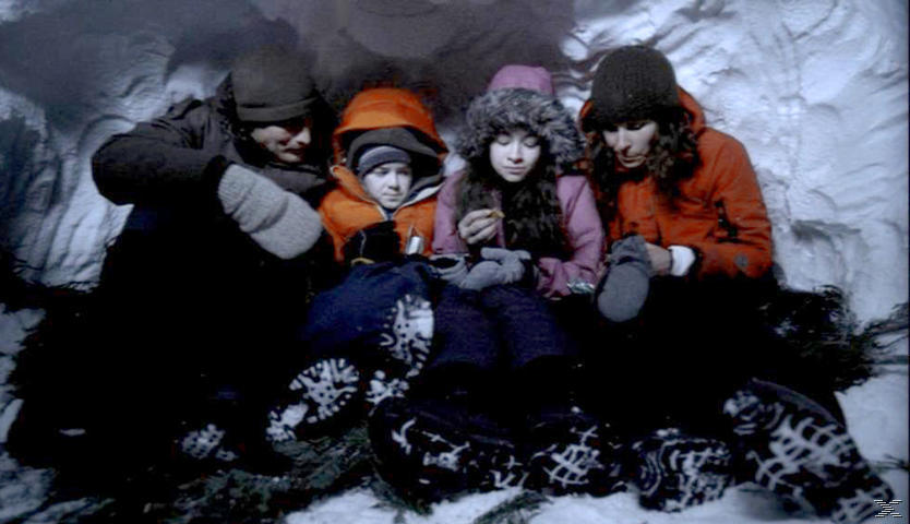 Eisbeben - Alarm in der Arktis - (Blu-ray)