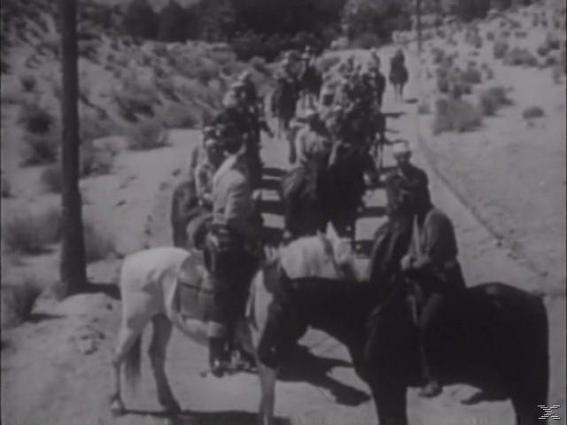 Auf nach Westen-Pioniere u.Trapper erobern Amerika - (DVD)