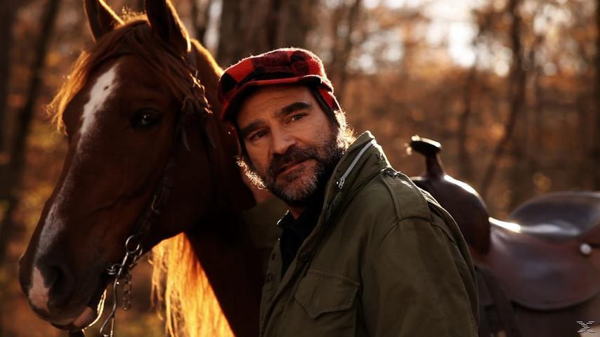 Das Glück der Pferde - (DVD)