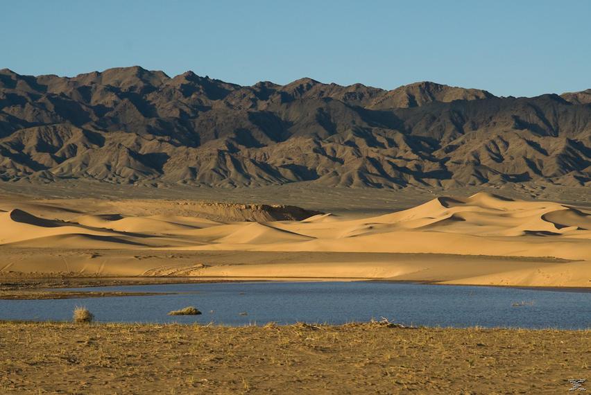 Faszination Wüste: Gobi - Größte Steppenwüste Asiens [Blu-ray]