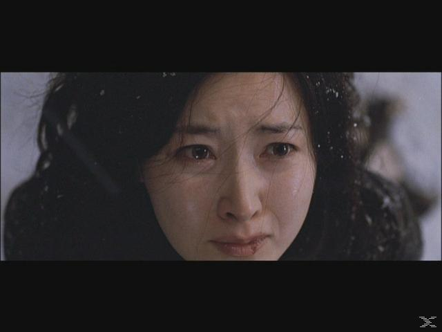 Lady Vengeance - (DVD)