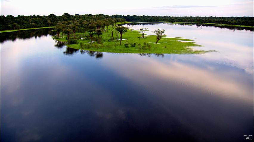 Amazonas - Im Herz der wilden Natur - (DVD)