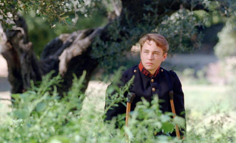 Renoir - (Blu-ray)