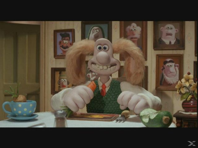 Wallace & Gromit - Auf der Jagd nach dem Riesenkaninchen - (DVD)