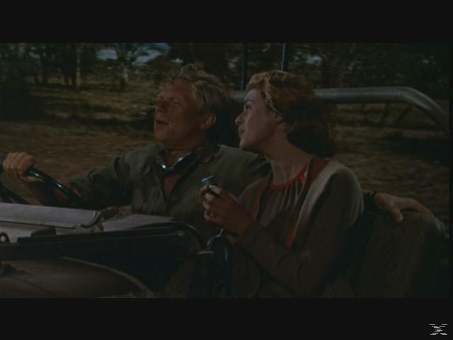Abenteuer - Edition (3 Filme) [DVD]