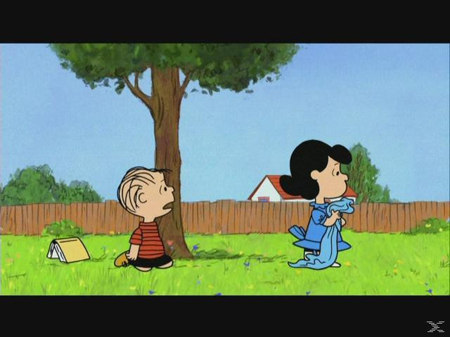 Die Peanuts: Glück ist eine wärmende Decke, Charlie Brown [Blu-ray]