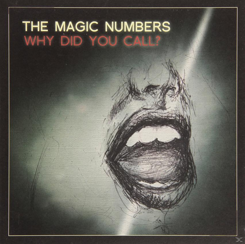 WHY DID YOU CALL (LP 12INCH)