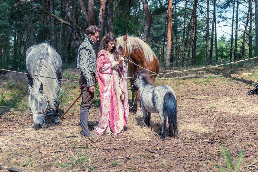 Prinz Himmelblau und Fee Lupine - (DVD)