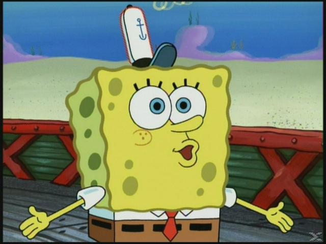 SpongeBob Schwammkopf – Wikinger Abenteuer [DVD]