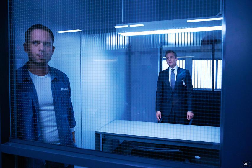 Suits - Season 6 - (Blu-ray)