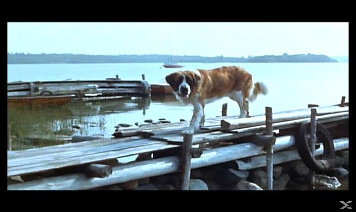 Ferien auf Saltkrokan - Pilotfilm [DVD]