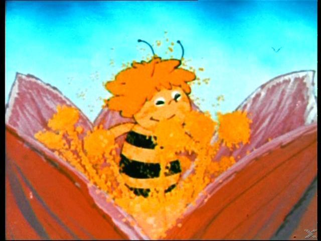 Die Biene Maja Komplettbox (104 Episoden) - (Blu-ray)