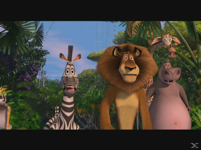 Madagascar Abenteuer Blu-ray