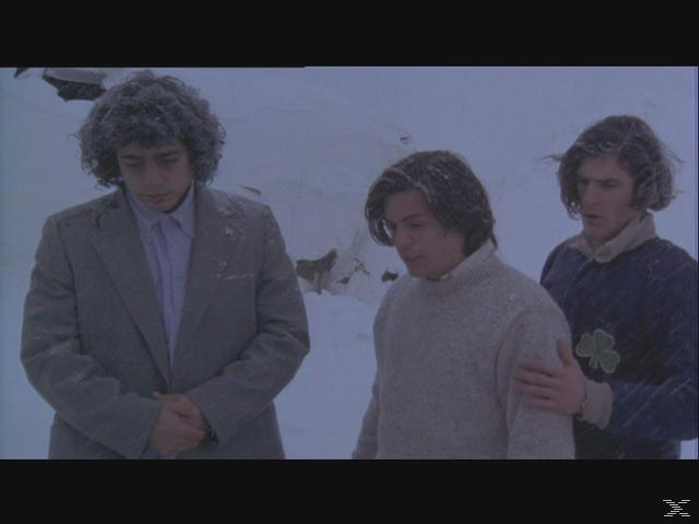 Überleben - (DVD)