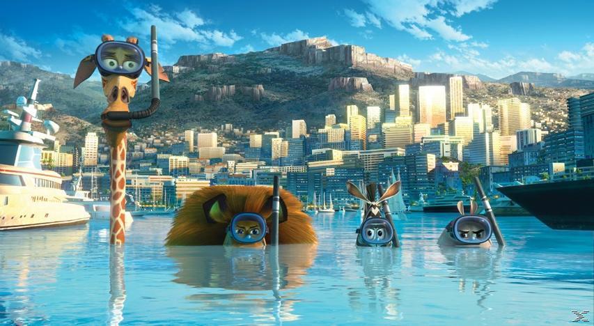 Madagascar 1-3 - (Blu-ray)
