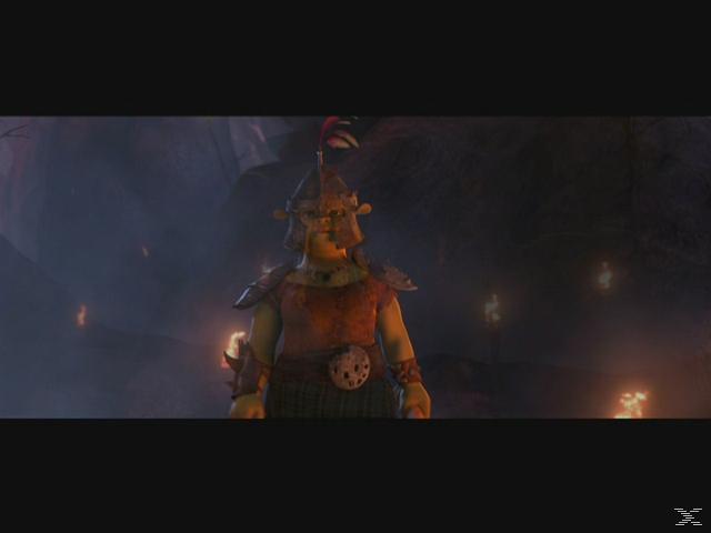Shrek 4 - Für immer Shrek [Blu-ray]