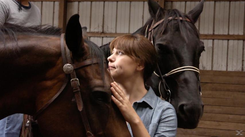 Pferdehof des Glücks - Happy Valley - (DVD)