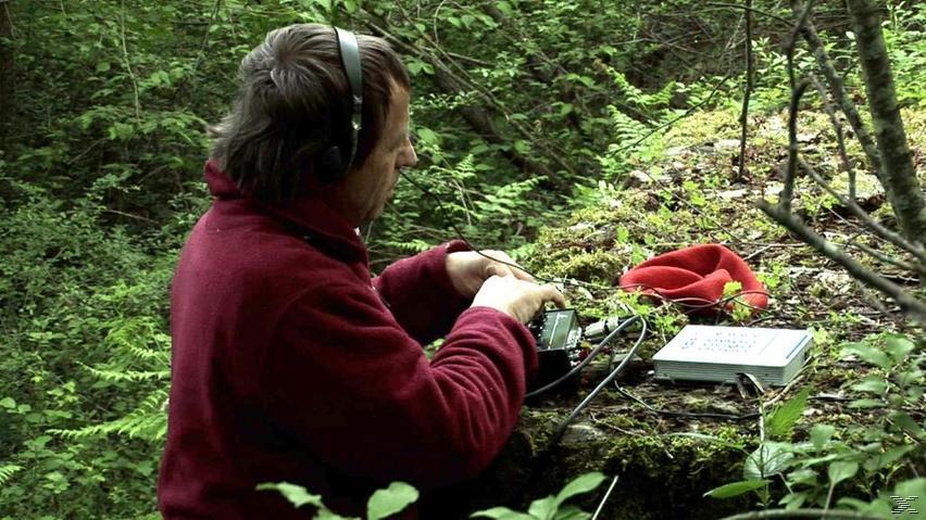 Im Garten der Klänge - (DVD)