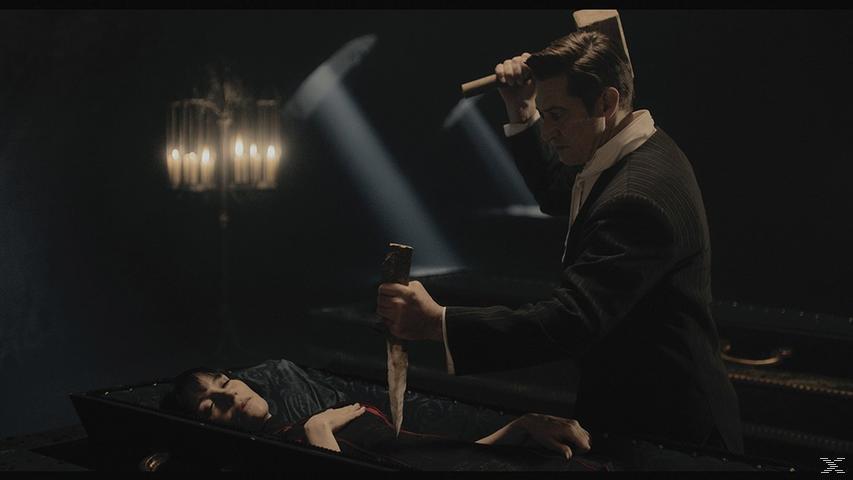 Therapie für einen Vampir [DVD]