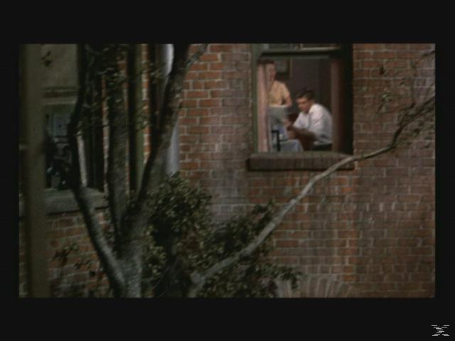 Das Fenster zum Hof [DVD]