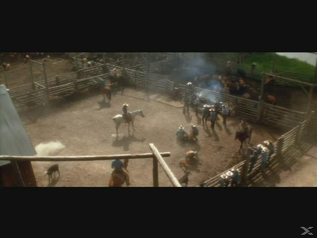 Der Pferdeflüsterer (Special Edition) [Blu-ray]