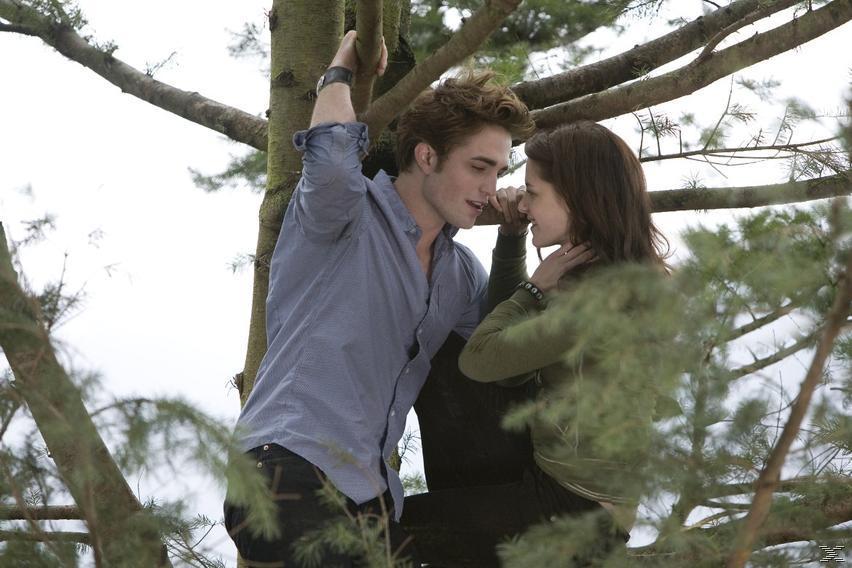 Twilight - Biss zum Morgengrauen - (DVD)