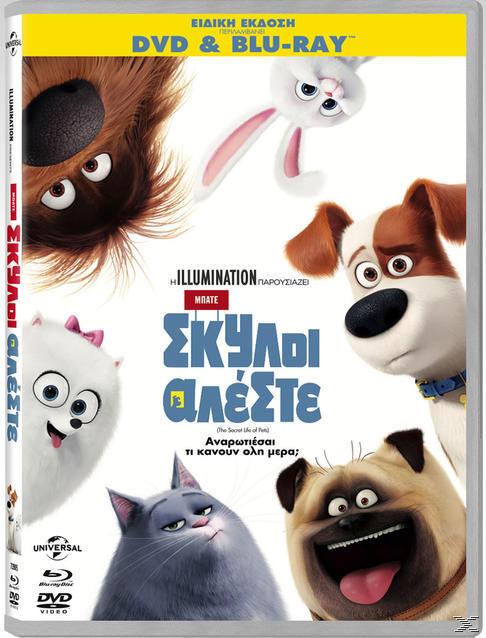 ΜΠΑΤΕ ΣΚΥΛΟΙ ΑΛΕΣΤΕ [BLU RAY&DVD]
