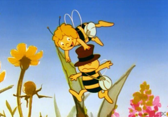 Die Biene Maja - Box 1 [DVD]