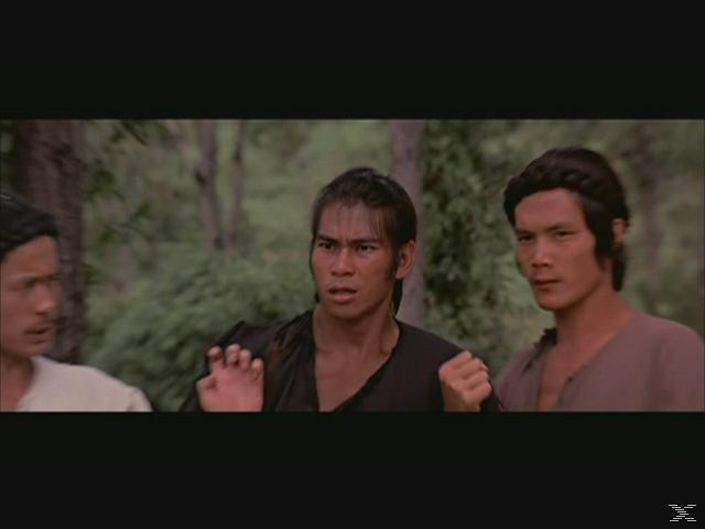 Die Todesfäuste der Shaolin (Shaw Brothers Classic) - (DVD)