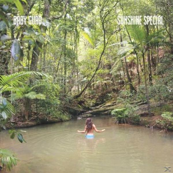 SUNSHINE SPECIAL (LP)