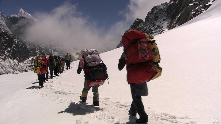 Die Suche der Sherpas - (DVD)