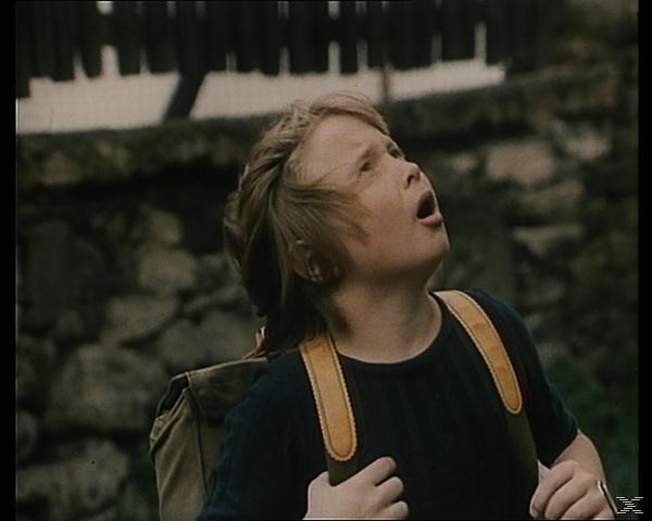 DER FLIEGENDE FERDINAND - (DVD)