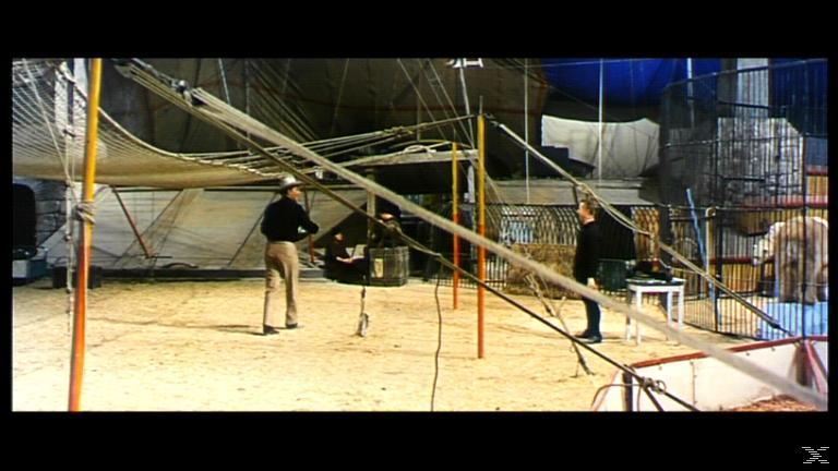 Zirkuswelt - Held der Arena - (DVD)