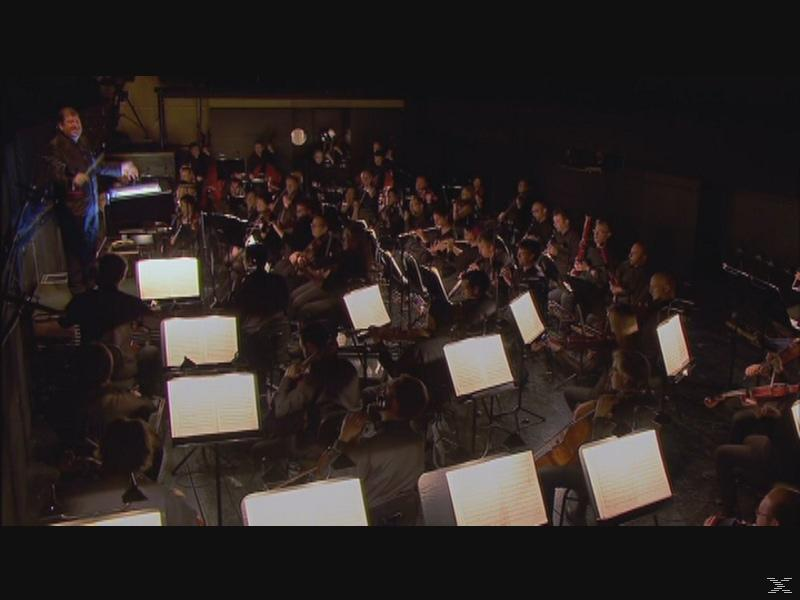 Chorus & Orchestra Of The Teatro Real, Christopher Maltman, Peter Lodahl, Ilker Arcayürek, David Algeret, David Jerusalem - Das Liebesverbot - (DVD)