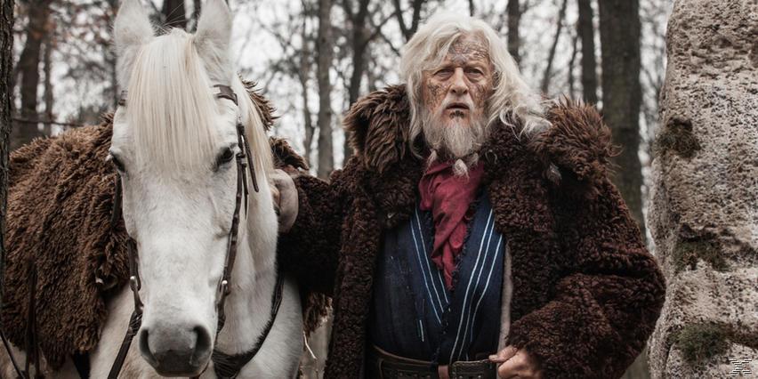 The Last Kingdom - Staffel 1 - (DVD)