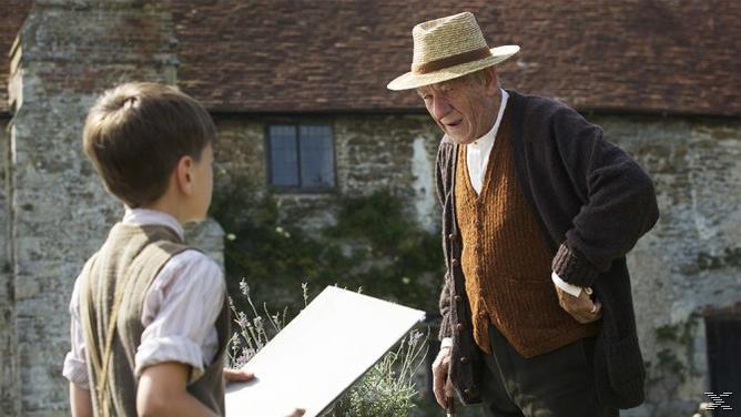 Mr. Holmes - (Blu-ray)