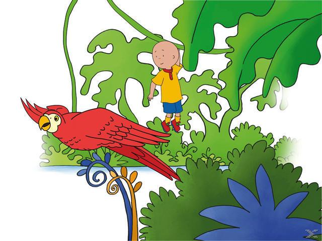 Caillou 15: Caillou und die Dinosaurier und weitere Geschichten - (DVD)