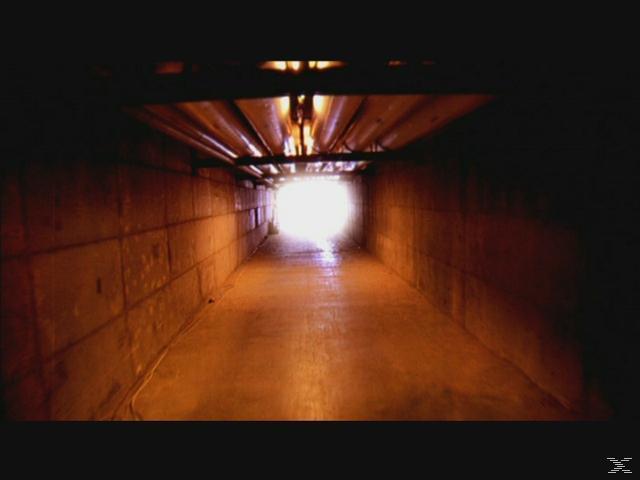 Bis aufs Blut: Über den Tod hinaus - Staffel 1 [DVD]