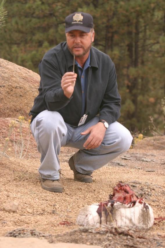 CSI - Das Finale - (DVD)