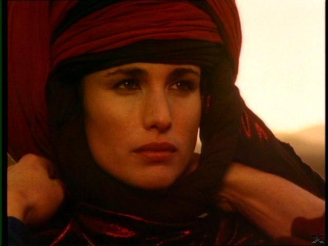 Das Geheimnis der Sahara [DVD]
