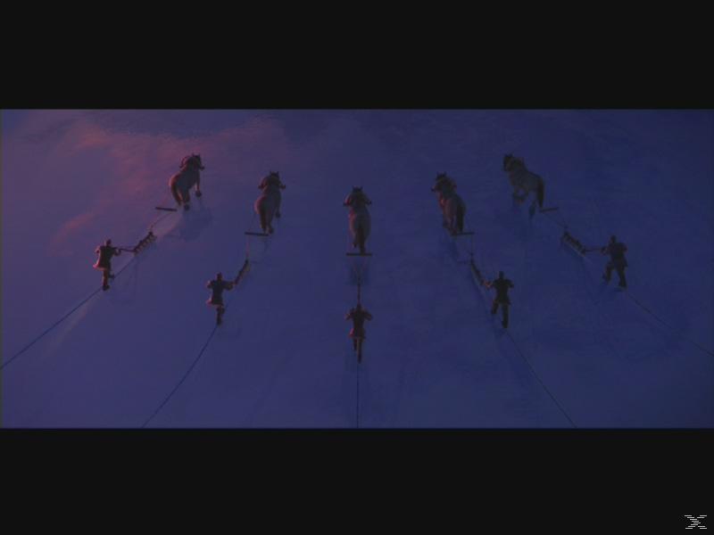 Die Eiskönigin - Völlig unverfroren [DVD]