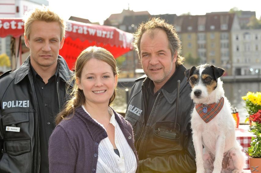 Da kommt Kalle - Staffel 4 - (DVD)