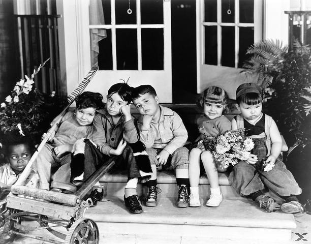 Die kleinen Strolche - 1935-1938 [DVD]