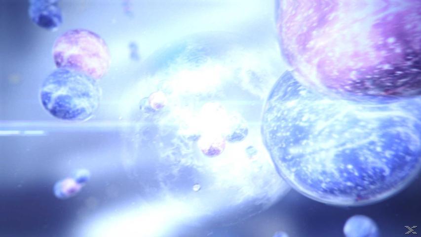 Die Geschichte der Sterne - Vom Leben und Sterben der Himmelskörper - (DVD)