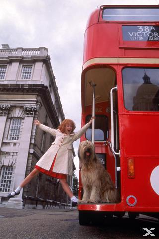 Annie - (DVD)