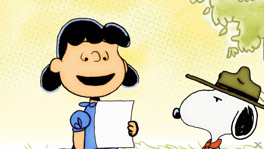 Peanuts - Die neue Serie - Vol. 8 - (DVD)