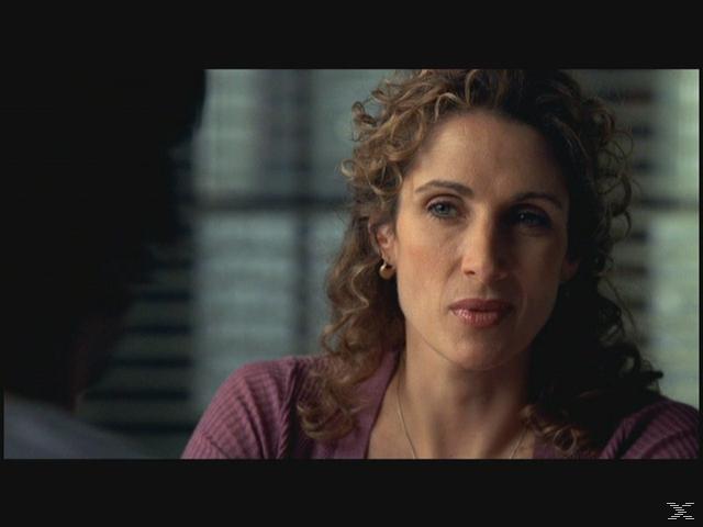 CSI: NY - Staffel 2 - (DVD)