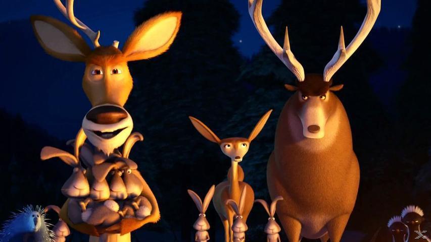 Les Rebelles de la Forêt 4 DVD