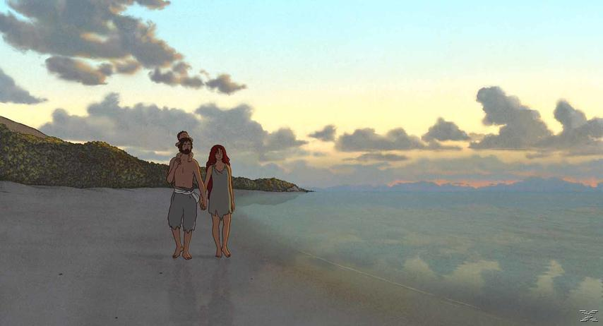 The Red Turtle Special Edition DVD