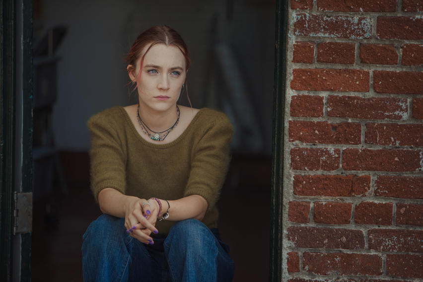 Lady Bird - (DVD)